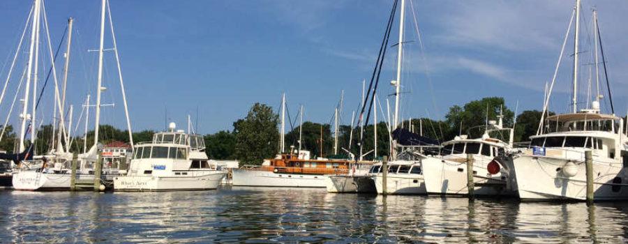 Shoreline Stewardship Guide