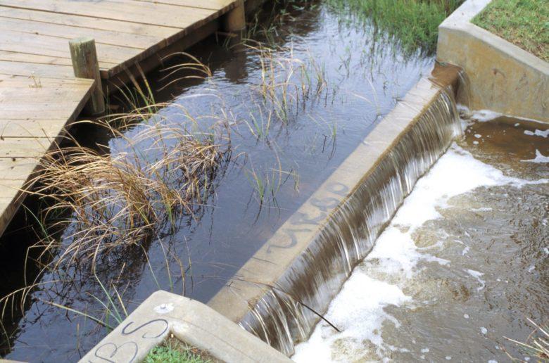 Stormwater Runoff - Chesapeake Legal Alliance