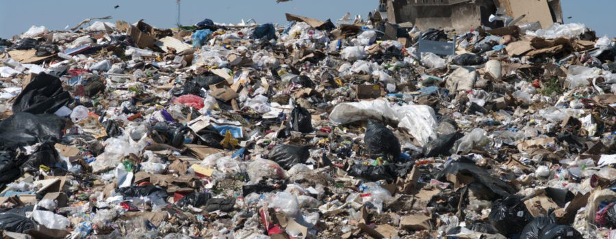 Crownsvillle Dump and Landfill Cleanup