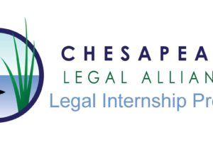 Meet the CLA 2020 Summer Legal Interns