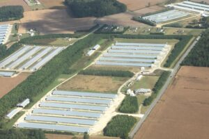Maryland Court hands down a landmark ruling on poultry industry ammonia emissions